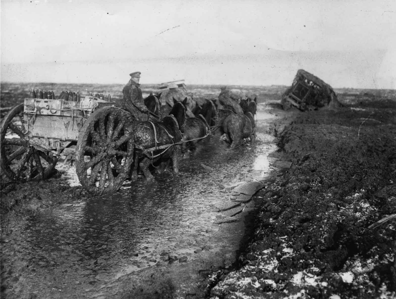 The history of the battle of somme