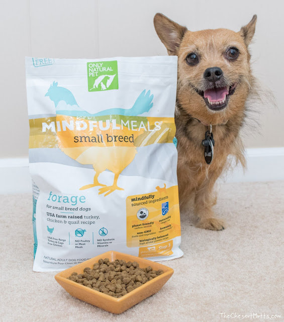 Mini Review: Only Natural Pet MindfulMeals Organic Small Breed Dog Food