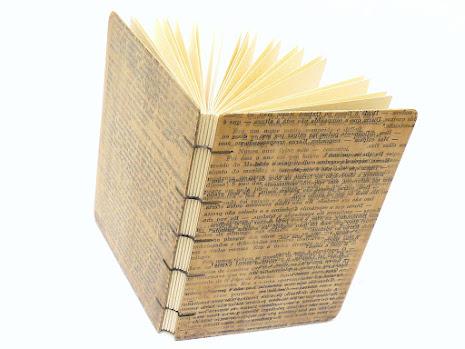 canteiro-de-alfaces-papelao-artesanal-copta-polen-carvalho