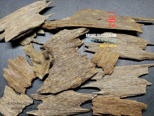Yellow Soil Grade of Agarwood from Brunei for burn as incense. Will be great if you have electric incense heater.
