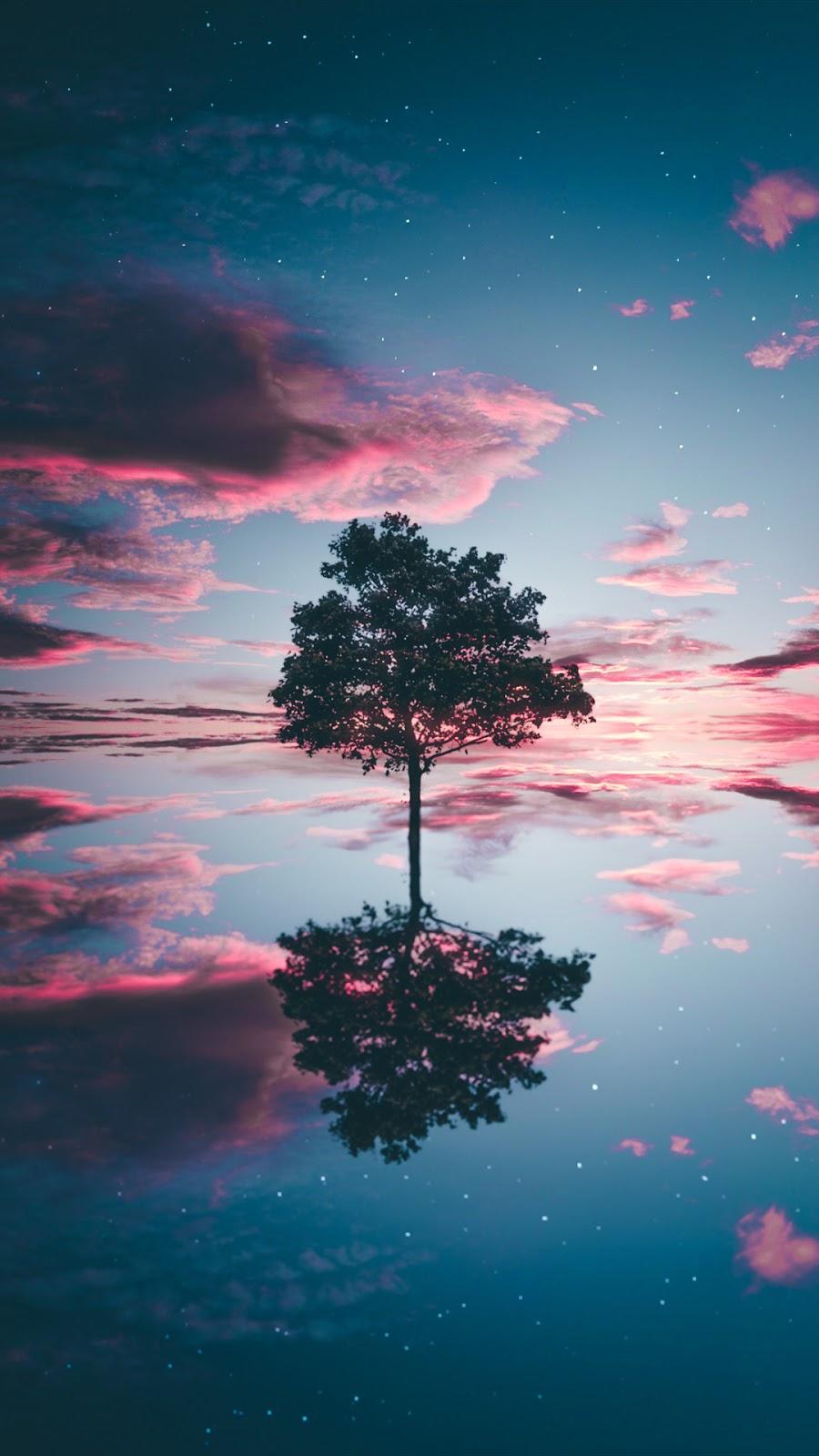 Cô đơn giữa bầu trời đầy sao