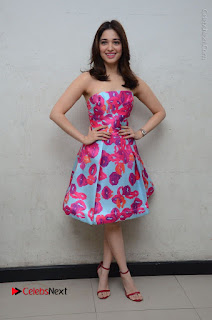 Actress Tamanna Latest Images in Floral Short Dress at Okkadochadu Movie Promotions  0173.JPG