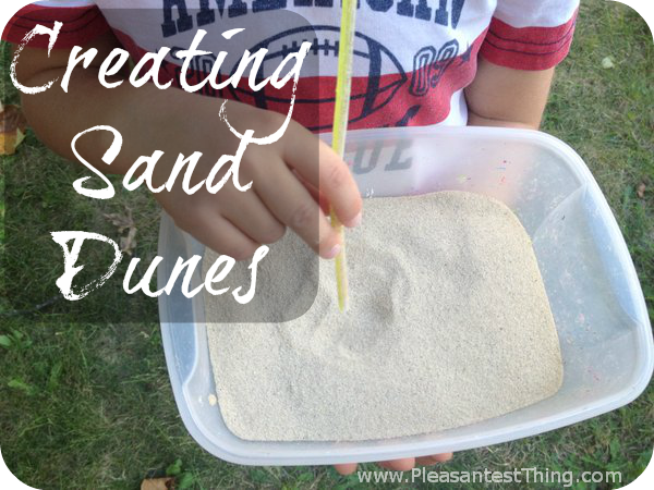 Sand Dune with straw