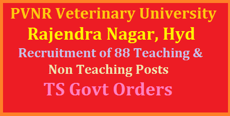 recruitment-of-88-teaching-non-teaching-posts-pvnr-veterinary-university-hyderabad-get-details