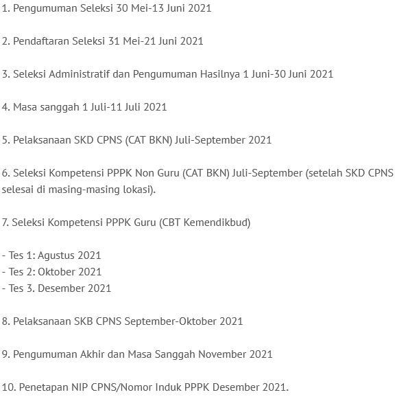 Jadwal Lengkap Seleksi CPNS dan PPPK 2021 dari Kemenpan RB