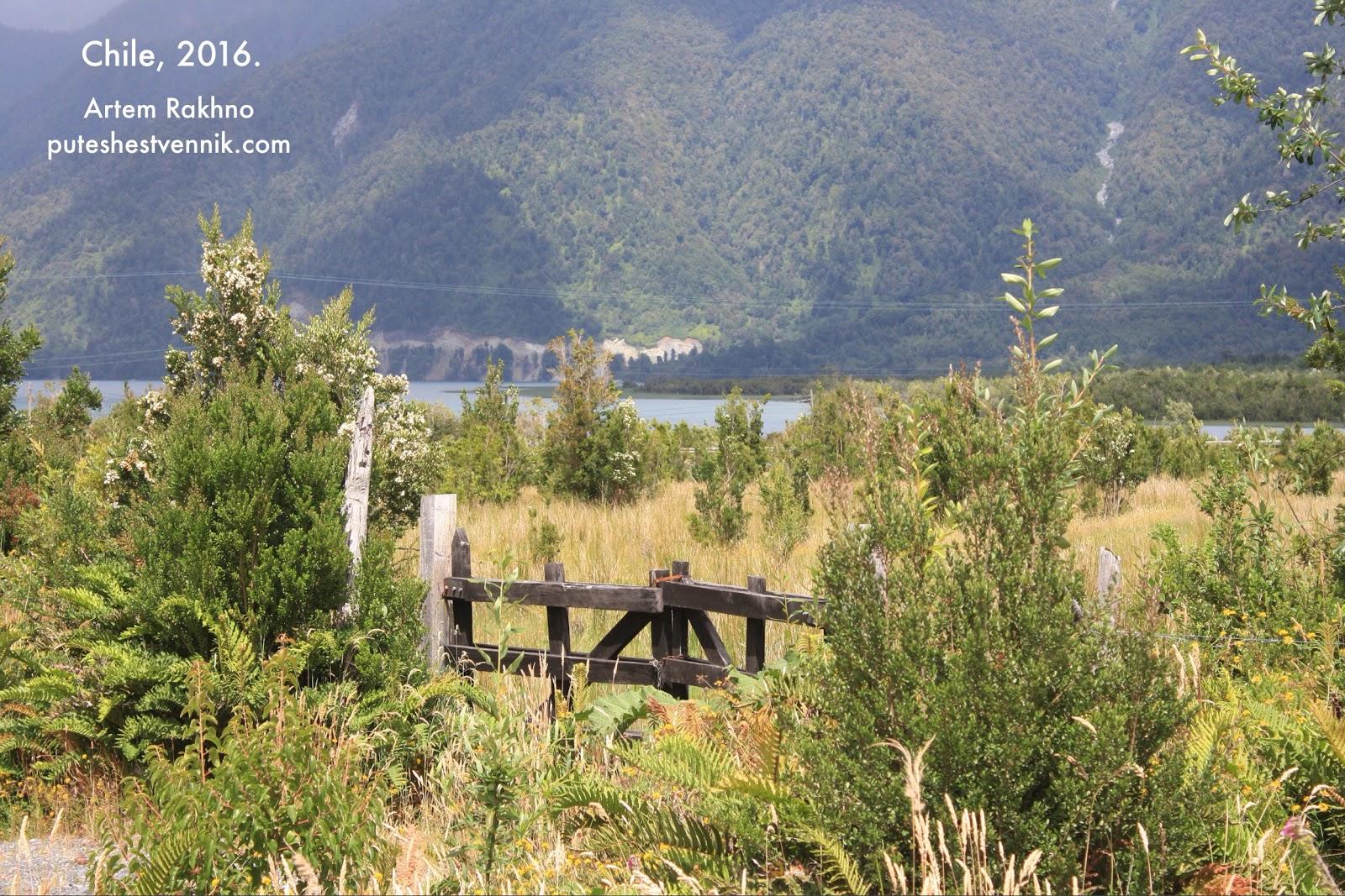 Деревянные ворота и поле