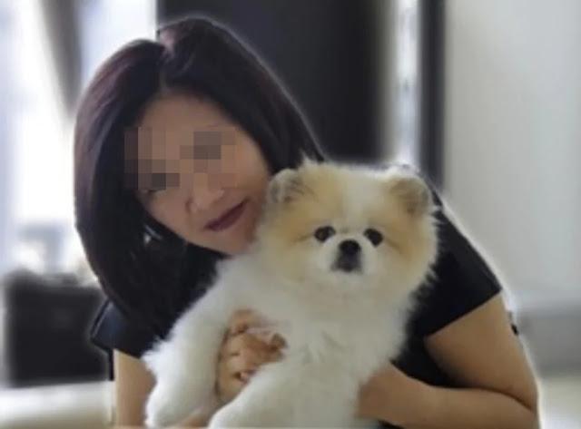 Dog Tests positive for Coronavirus