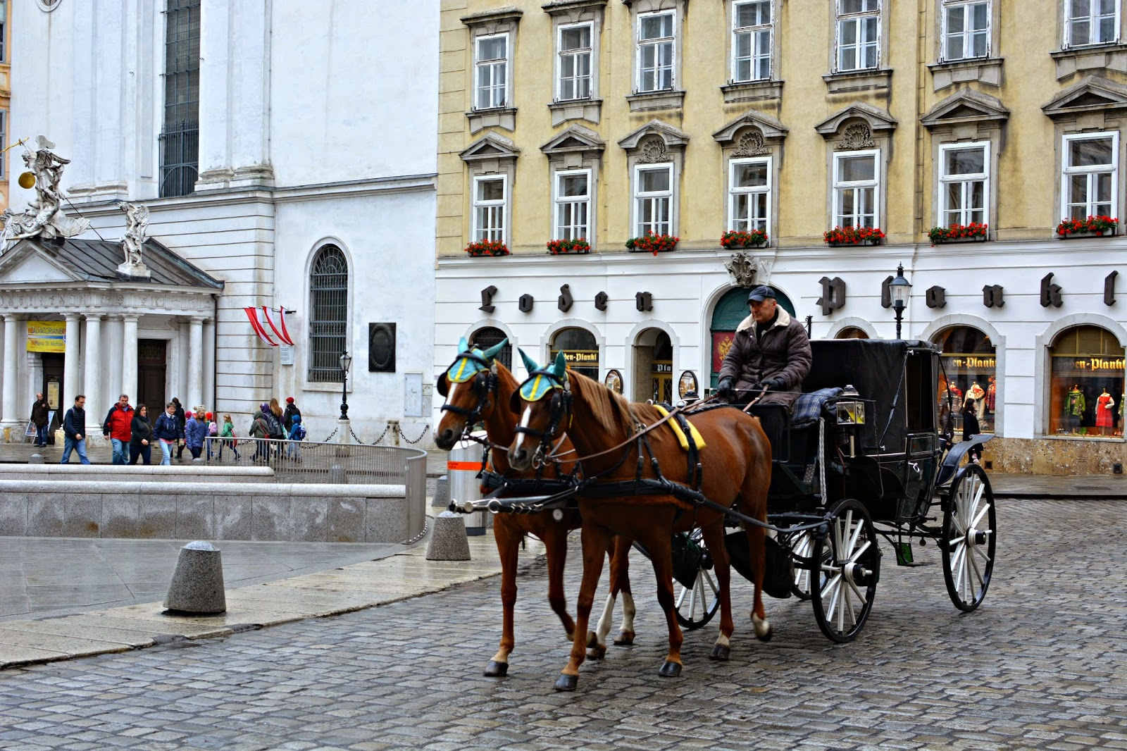 horse and carriage in vienna