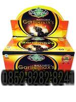 Black Garlic Garlicmaxs Isi 60 Kapsul (Bawang Hitam)