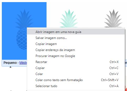 Como salvar imagens da internet para imprimir