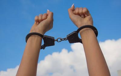 محامية,نمساوية,مشهورة,تسعى,إلى,إنقاذ,لاجئة,عراقية,من,السجن
