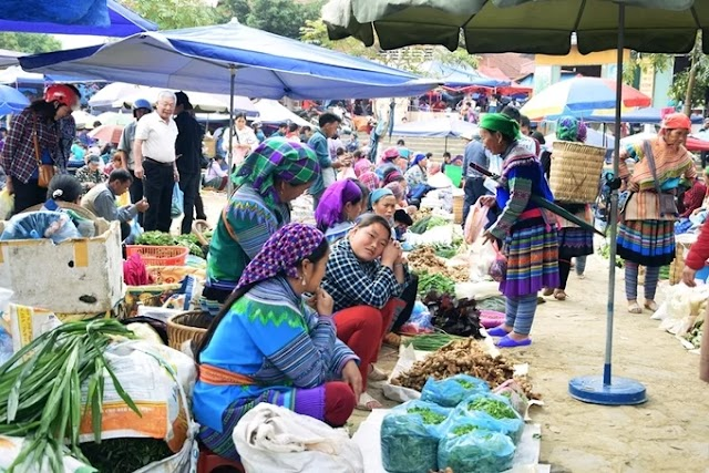 Bac Ha fair - a must-visit place when hunting Northwest ripe rice