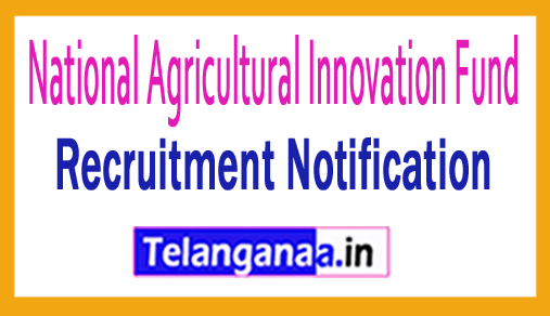 National Agricultural Innovation Fund NAIF Recruitment