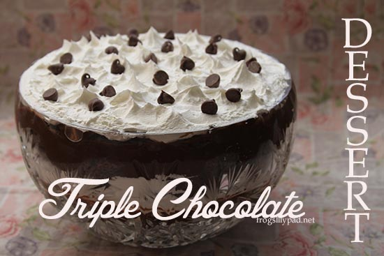 Chocolate, Chocolate, and more Chocolate - Tripe Chocolate Dessert