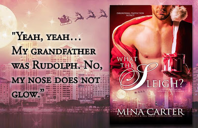 Alisa's Review: What the Sleigh by Mina Carter