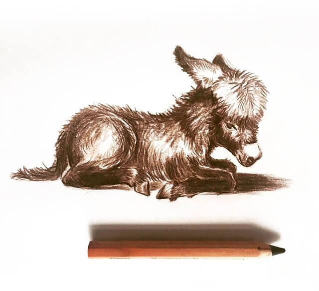 08-Little-donkey-Farbe-Und-Fabeln-www-designstack-co