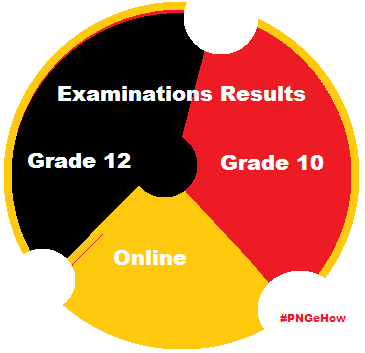 Grade 10 and 12 Examination Results online