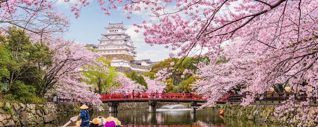 Festival Sakura Hirosaki