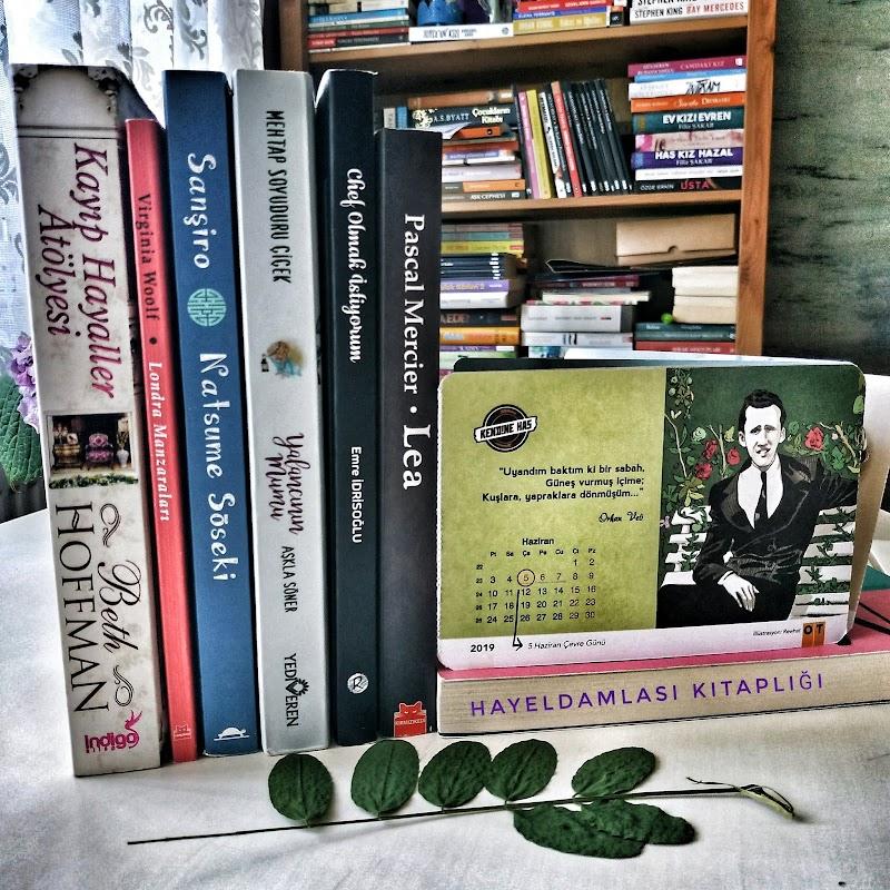 Haziran Ayında Okuduğum Kitaplar