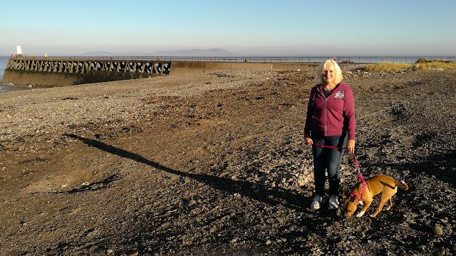 Photo of me walking Tess on Maryport beach