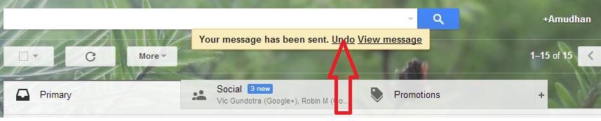 Gmail Undo Page - E info Book