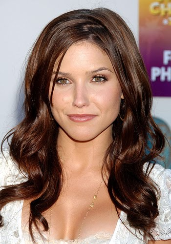 Ly Hairstyles: Brunette Hair Color