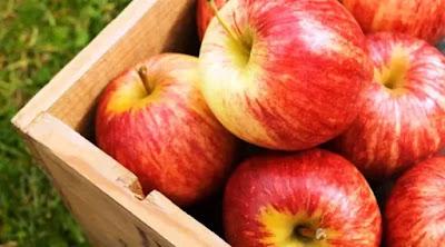 Manfaat Apel
