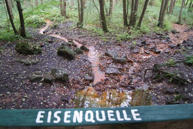 Ein Quellbach, in dem rostrotes Wasser fließt