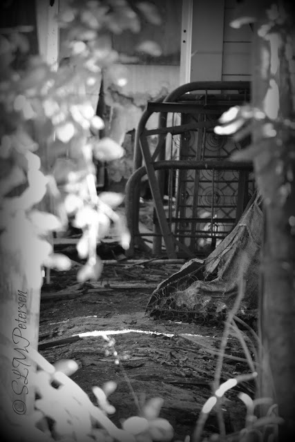 Stacy Petersen Photography - Forgotten Bed