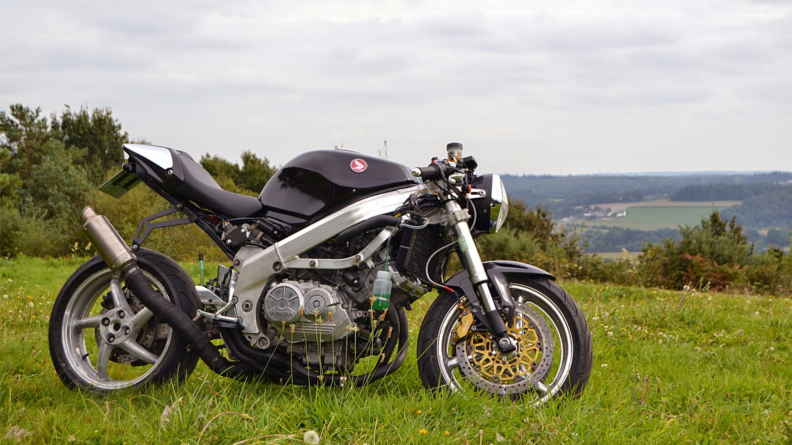 small resolution of 89 sportster wiring diagram 89 get free image about wiring diagram