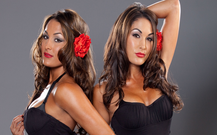 bella twins hd wallpapers free download wwe hd
