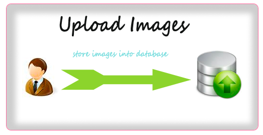 How to Upload Files / Images In Database