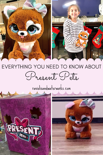 a real life experience of present pets