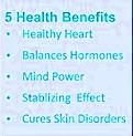 Health benefits of rudraksha tree