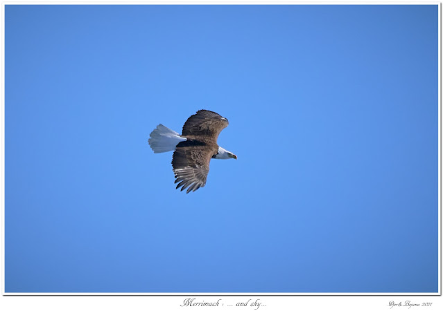 Merrimack: ... and sky...