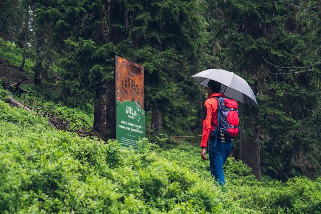 Waldwellness-Weg Saalbach | Regenwandern im #HomeofLässig | Waldbaden in Saalbach 09