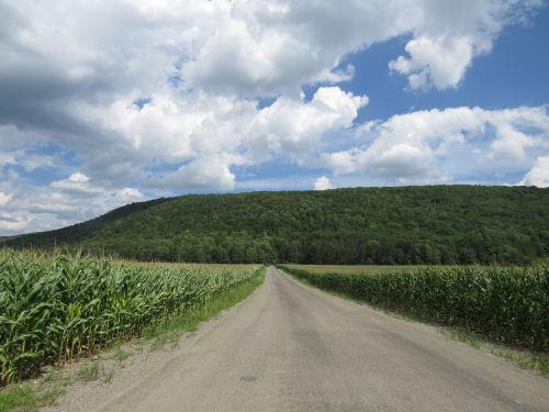 Clark Hill Road