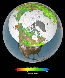 gases efecto invernadero co2