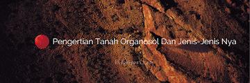 Pengertian Tanah Organosol Dan Jenis-Jenis Nya