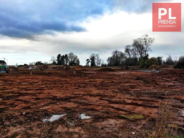 Osorno: Inmobiliaria rechaza acusaciones sobre destrucción de humedal