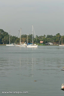 Yachts anchored at Kochi backwaters near Bolgatty island, Kochi, Kerala
