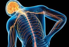 ما الذي يسبب الألم المزمن؟