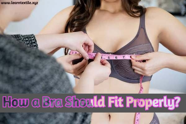 How Should a Bra Fit Properly | How Should a Bra Fit Correctly?