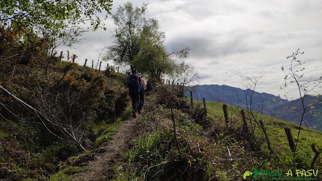 Camino a la Sierra de Peña Mayor desde la Faya los Llobos