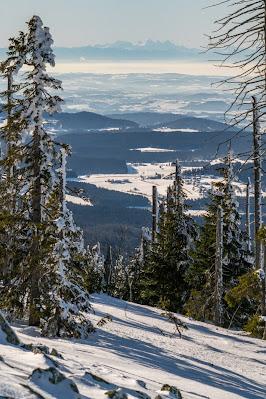 Wanderung auf den Lusen  Winterwandern im Nationalpark Bayerischer Wald 15