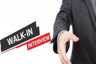 Hari Ini Walk Interview AYAM MADU Si BANGKONG Tasikmalaya