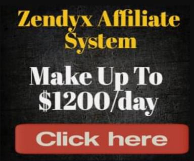 Zendyx Affiliate System, Zendyx Affiliate System reviews, Zendyx Affiliate System pdf book, Zendyx Affiliate System 2020