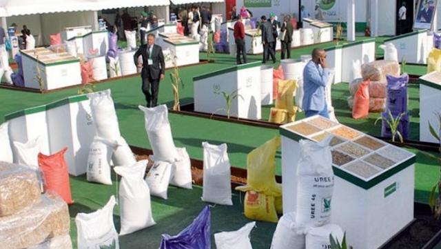 """مؤسسة OCP تطلق برنامج """"Restore Africa Soils"""""""