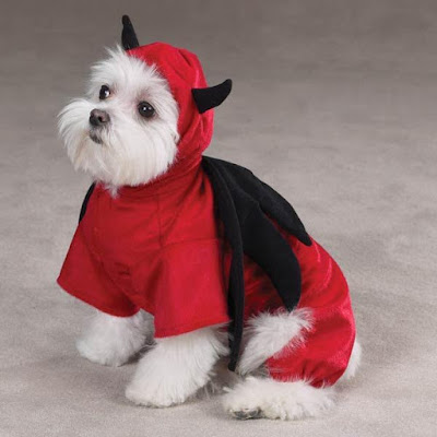 Devil-dog-costume-Fluppies