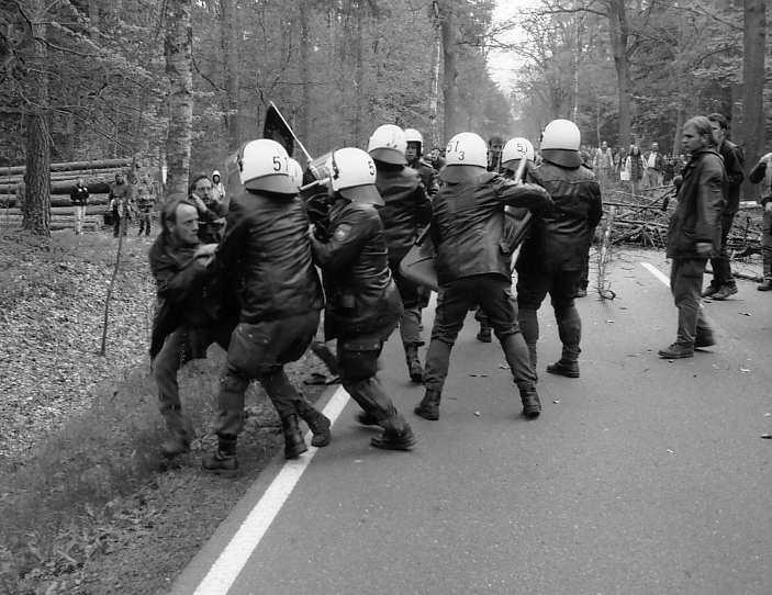 demonstrantin polizeiwagen 3 pfefferspray